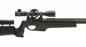FX-T12 Field Target